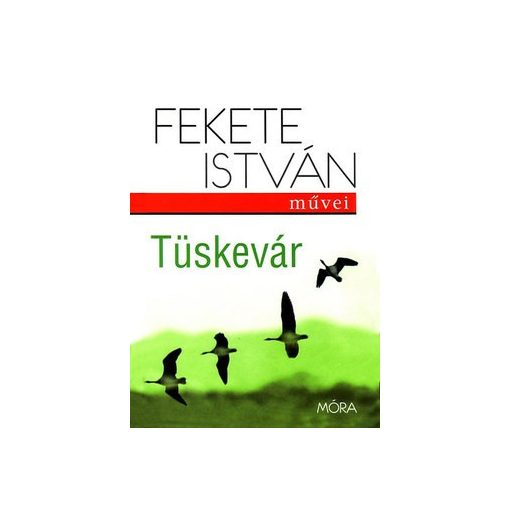 Fekete István-Tüskevár